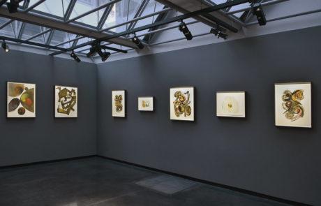 Seven pieces of Irving Penn artwork framed by Bark Frameworks at Hamiltons Gallery