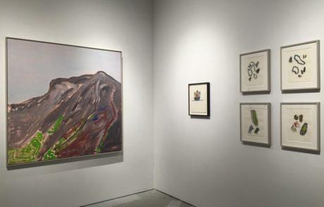 Elizabeth Enders at Real Art Ways Artworks