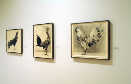 Jean Pagliuso Exhibition at Marlborough Gallery Rooster Portaits