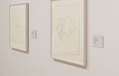 Two Drawings in Monet / Kelly Exhibition
